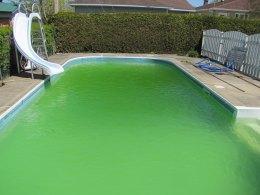 saletés dans la piscine